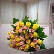 Доставка Голландских Цветов в Краснодаре по  интерсным   ценам